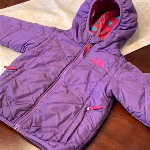 Reversible Down The North Face Puffer